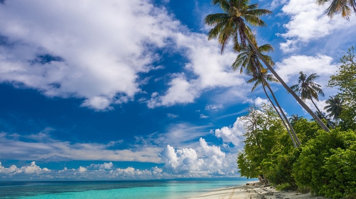 landscape, beach, island, photography, nature, summer, palm trees, sea, clouds, tropical, white, sand, Malaysia, Eden