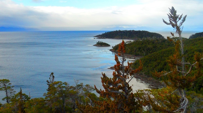 forest, nature, trees, clouds, island, sea, Patagonia, landscape, beach, Chile, photography, hills, peninsula