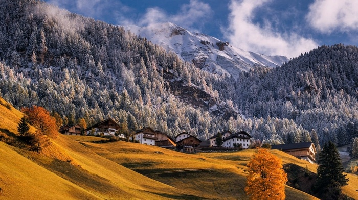 village, trees, fall, mountains, dry grass, Alps, morning, landscape, sunlight, Italy, forest, snowy peak, nature