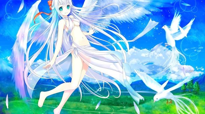white hair, hair band, anime, animals, angel, wings, flying, anime girls, original characters, smiling, birds, long hair, looking at viewer, aqua eyes