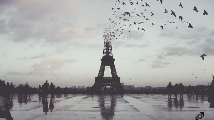 city, Paris, photoshop, France, photo manipulation, Eiffel Tower