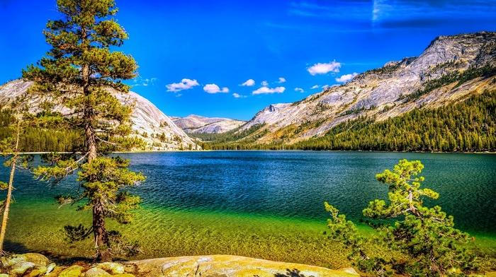 sky, Yosemite National Park, forest, mountains, nature, trees, landscape, lake, california, blue, summer