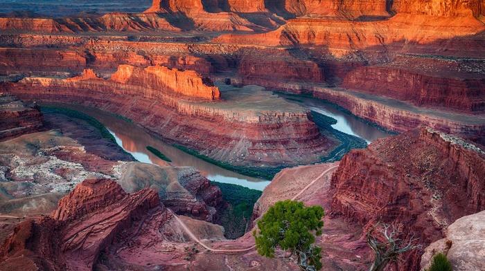 Utah, shrubs, river, nature, canyon, national park, erosion, landscape