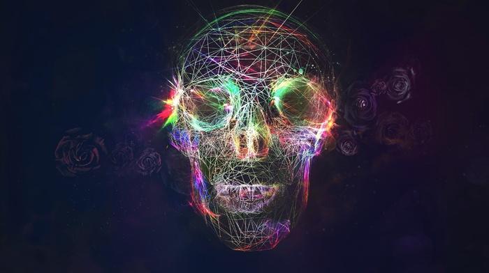 rose, skull, colorful