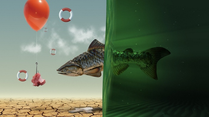 photoshop, balloon, water, fish, spec art
