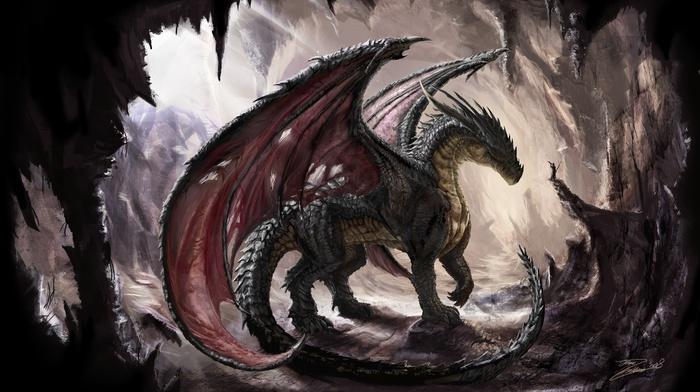 cave, dragon