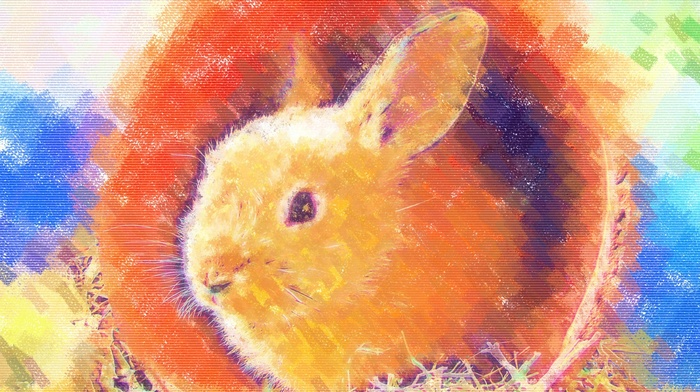 rabbits, colorful, painting