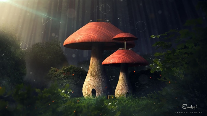 nature, leaves, mushroom, digital art, fantasy art, trees, circle, forest, sun rays, triangle