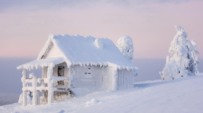 wood, frost, nature, calm, landscape, snow, winter, architecture, trees, house