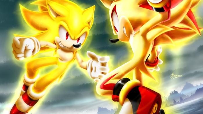 Sonic the Hedgehog, Shadow the Hedgehog, Sonic, video games