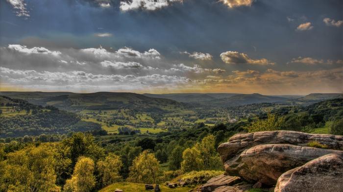 trees, stones, nature, HDR, landscape