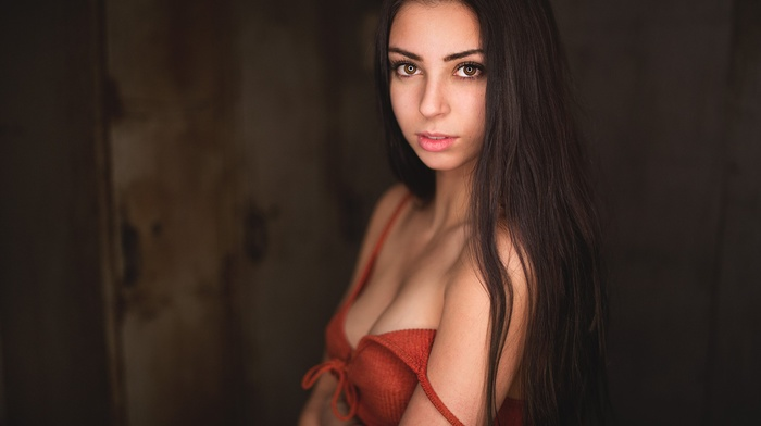 bare shoulders, eyes, straight hair, model, face, cleavage, long hair, simple background, brunette, girl, looking at viewer, portrait