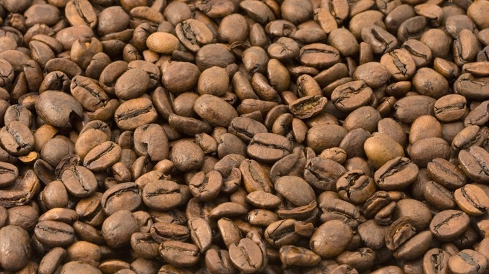 brown, closeup, coffee beans, coffee, nature