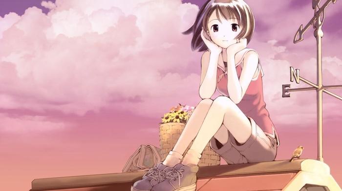 rooftops, brown eyes, brunette, anime girls, shorts, anime, sky