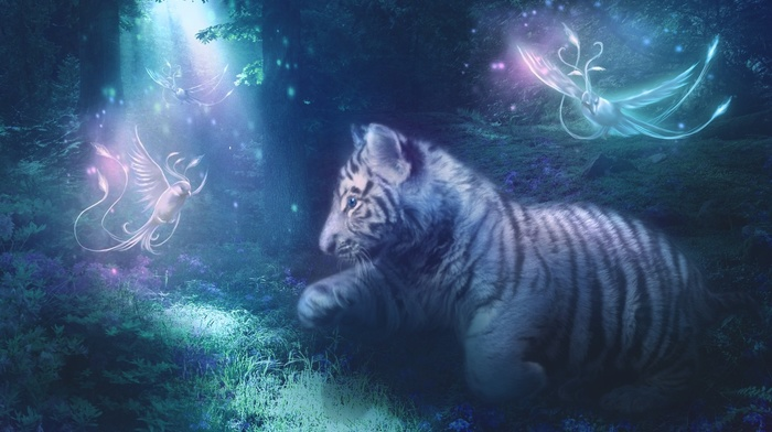 white tigers, baby animals, tiger, grass, animals, birds, cat, feline, plants, cubs, pine trees, trees