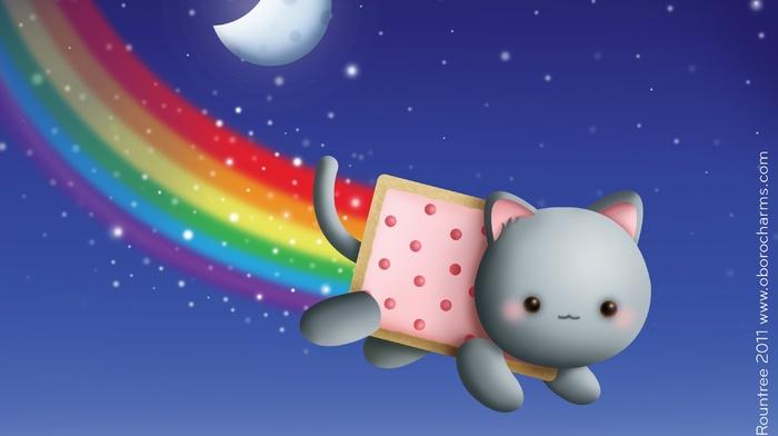 feline, memes, sky, animals, cat, moon, stars, night, rainbows, Nyan Cat, food