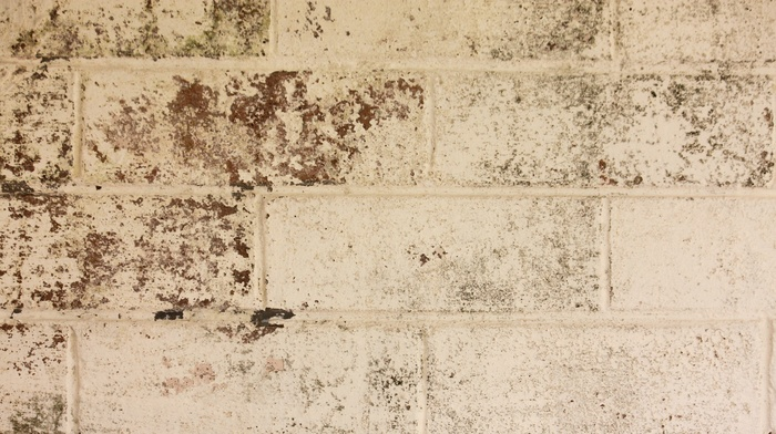 texture, bricks, wall, Brick