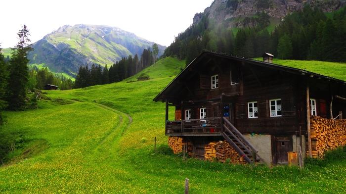 Bernese Alps, mountains, Alps, Lenk, green, chalet, grass, pine trees, Swiss Alps, Switzerland