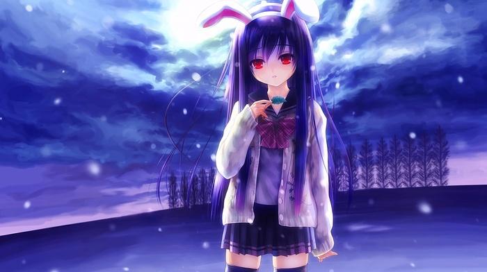 long hair, thigh, highs, red eyes, Reisen Udongein Inaba, animal ears, school uniform, anime, touhou, anime girls, brunette