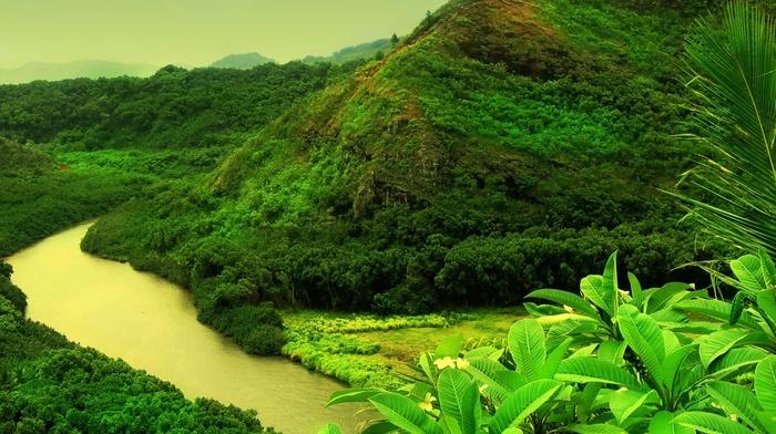 river, yellow