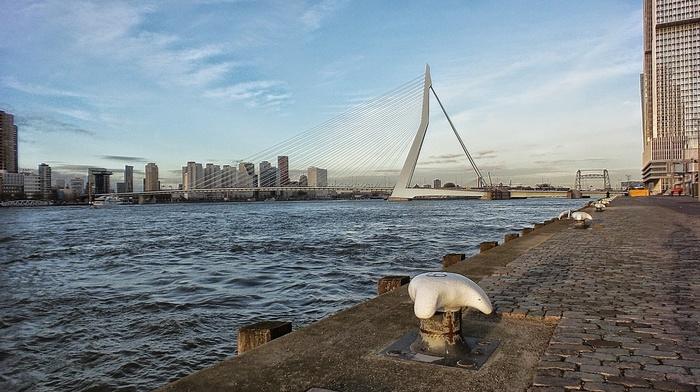 bridge, Rotterdam
