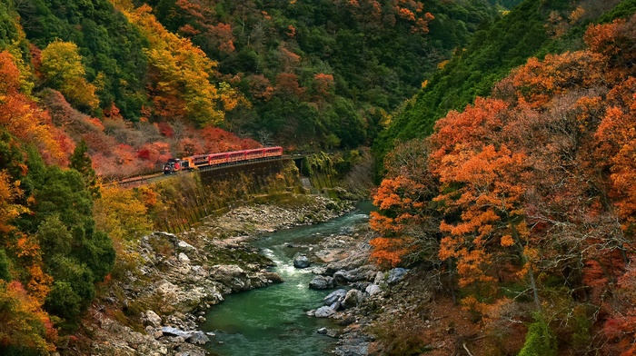 canyon, fall, forest, Japan, train, colorful, nature, landscape, mountains, river