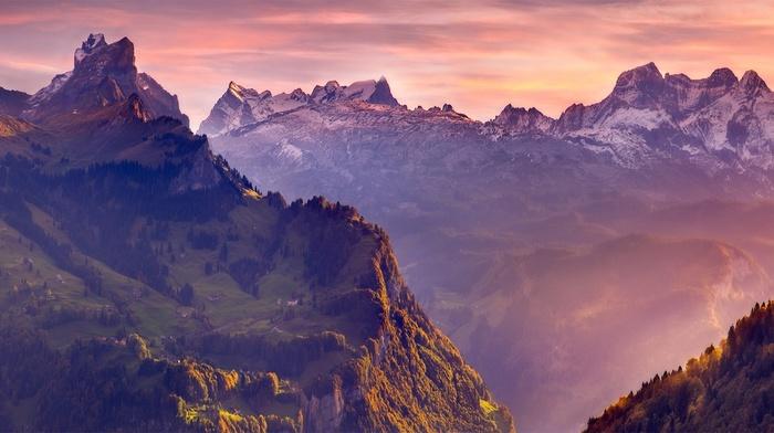 mountains, nature, village, forest, mist, landscape, sunlight, grass, snowy peak, Swiss Alps