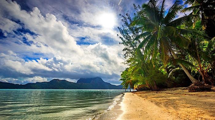 island, tropical, nature, landscape, Bora Bora, sea, sunlight, clouds, beach, French Polynesia, palm trees