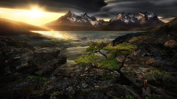 nature, photography, trees, sunlight, landscape, mountains, lake, dark, Patagonia, Chile, torres del paine national park, sunset, lenticular clouds, snowy peak