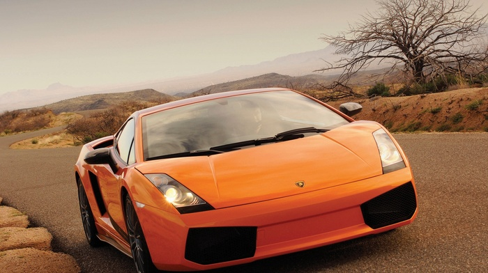 car, orange cars, Lamborghini