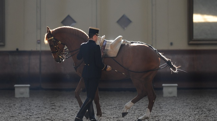 horse, France, men, standing