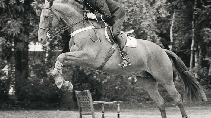 horse, men, horse riding