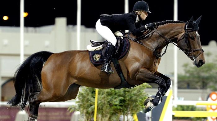 horse, Equitation, horse riding, jumping