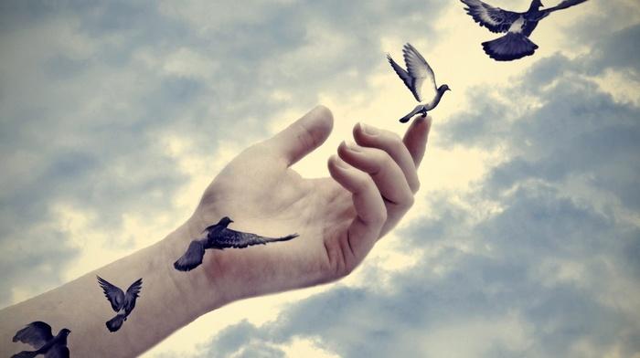clouds, artwork, flying, photo manipulation, sky, birds, hands, fingers