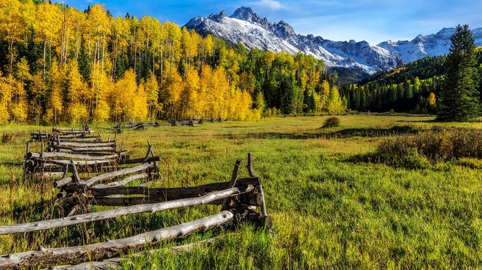 landscape, morning, grass, Colorado, fall, sunlight, mountains, nature, snowy peak, forest, fence, trees, yellow