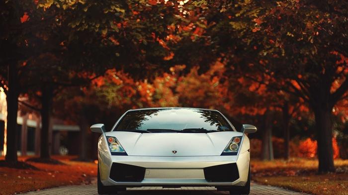 red, race cars, Lamborghini, Gallardo, road, trees, photography