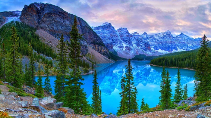 trees, mountains, landscape
