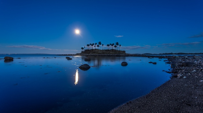 coconuts, island, moonlight, Norway, blue, nature, landscape, beach, water, reflection