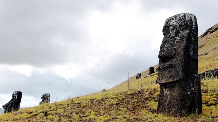 Easter Island, rano raraku, sculpture, Moai, isla de pascua