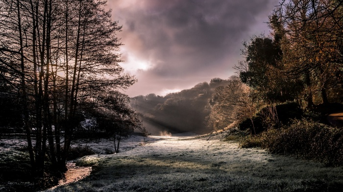 sun rays, creeks, nature, frost, landscape, trees, forest, sunlight, morning, UK, cold, clouds