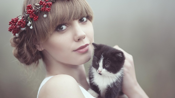 animals, kittens, girl, cat, looking at viewer, baby animals, model