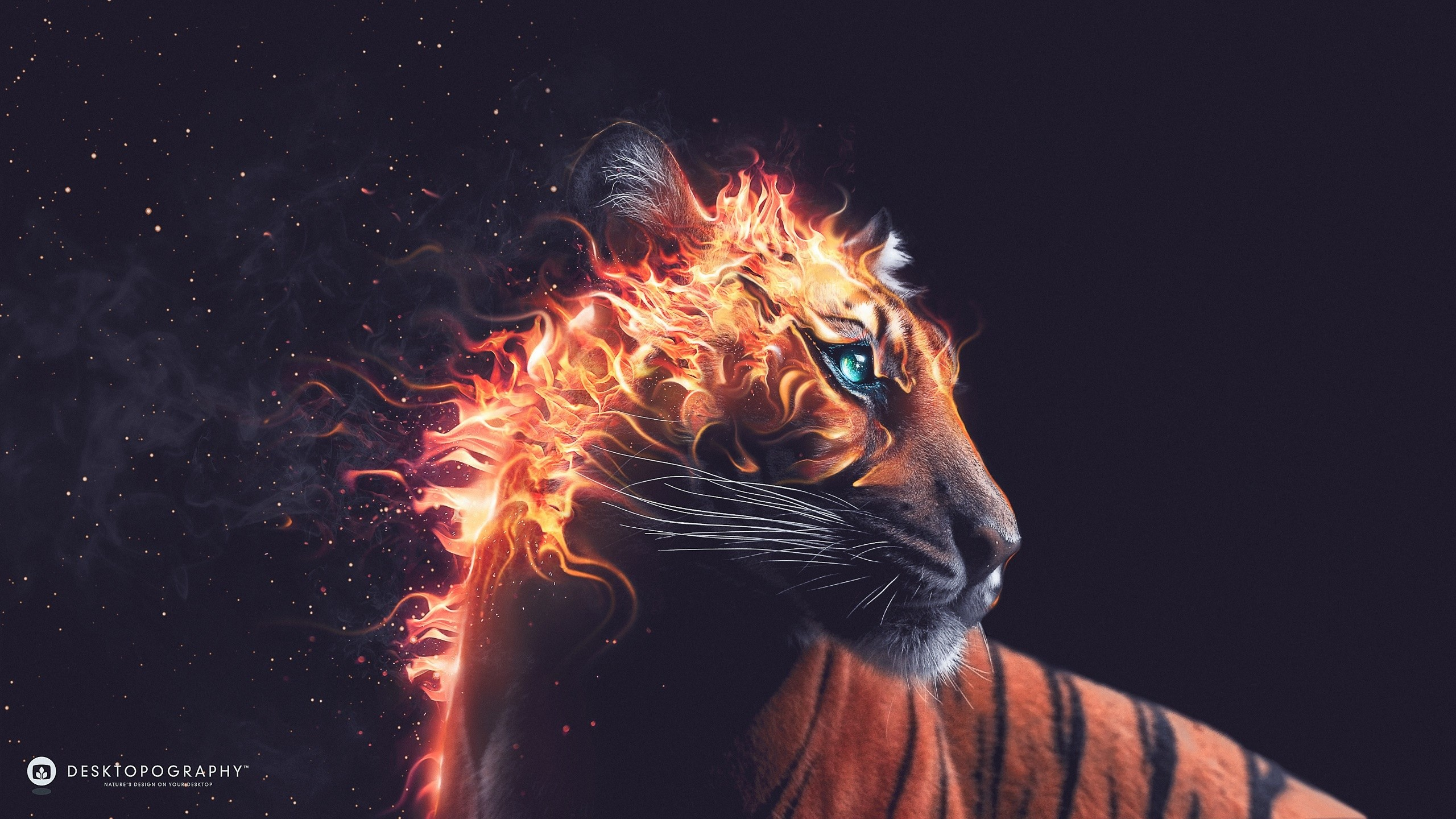 Desktopography artwork fire animals digital art tiger animals digital art tiger download wallpaper thecheapjerseys Gallery