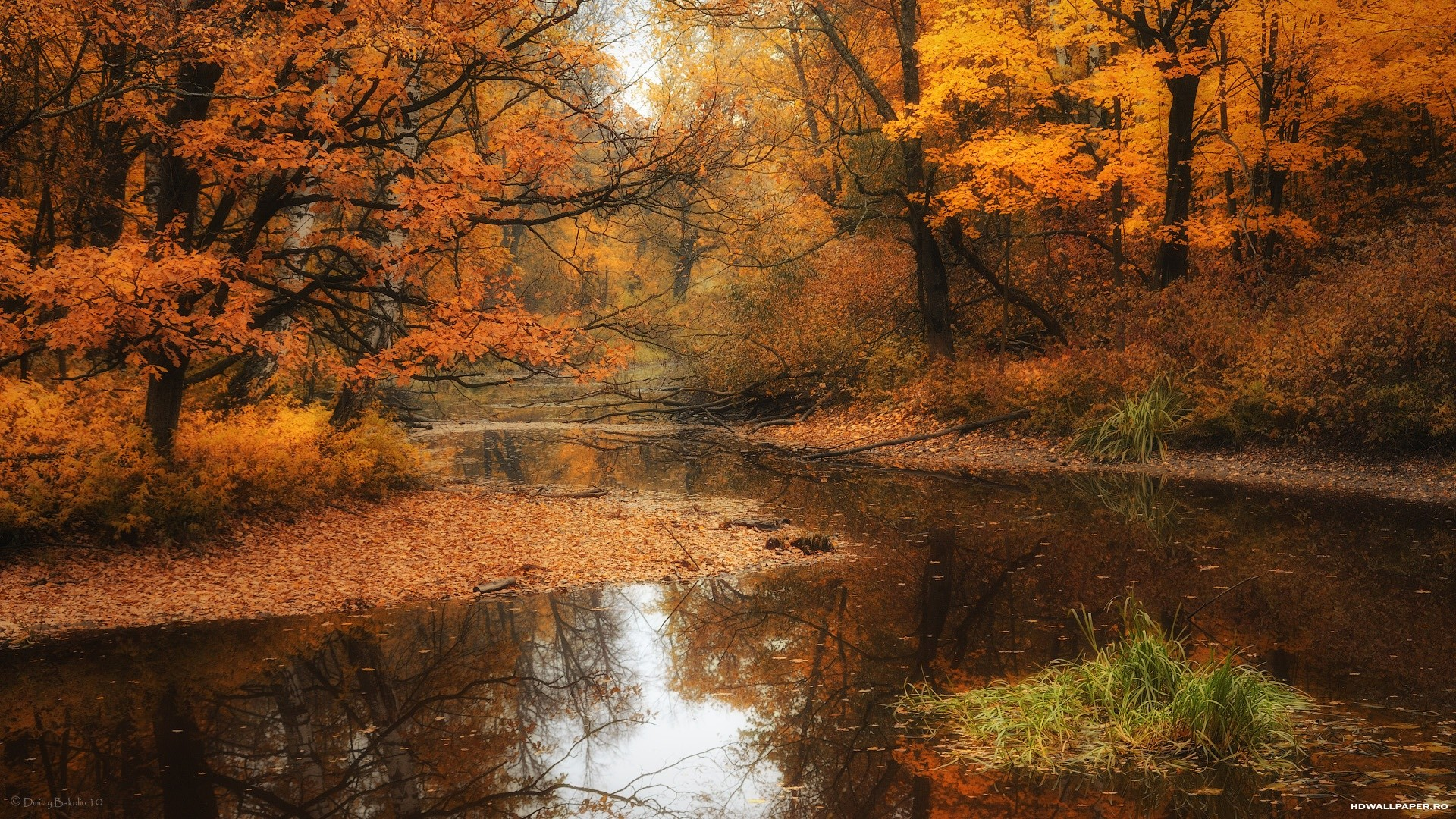 река, природа, вода