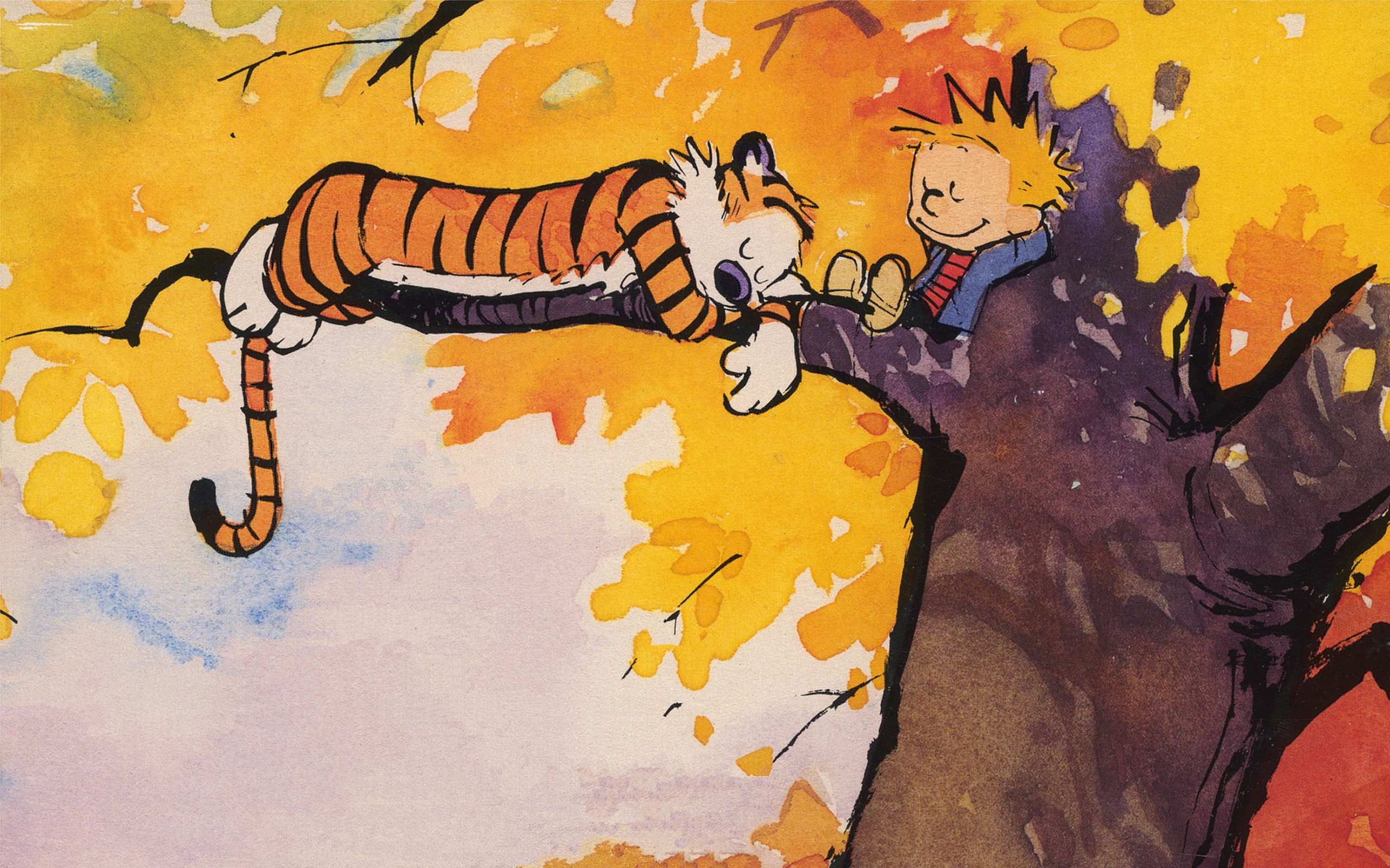 Calvin and Hobbes, comics - wallpaper #153619 (2560x1600px) on ...