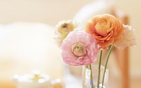 spring, tenderness, mood, wallpaper, vase