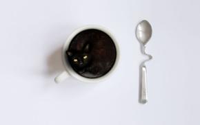 animals, kitten, cup