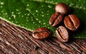leaf, macro, coffee