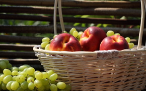 grapes, fruits, delicious, fence, basket
