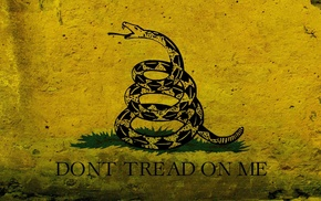 рисунок, красивые, графика, змея, Флаг