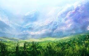 light, grass, stunner, field, sky